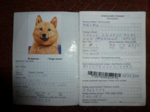 Сделать паспорт для собаки