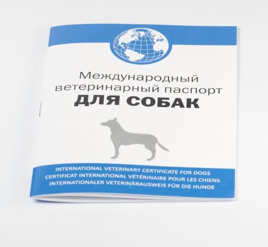 Международный ветеринарный паспорт для собак образец заполнения