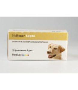 Нобивак для собак