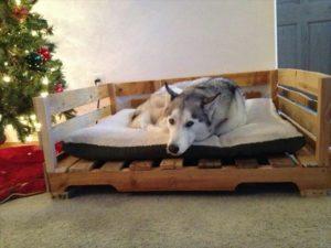 Сделать лежанку для собаки