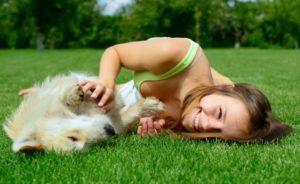 Чем реально заразиться от домашней собаки