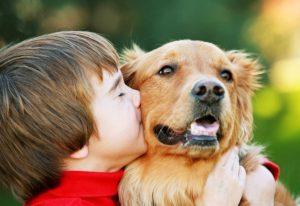 заразиться от собаки человеку